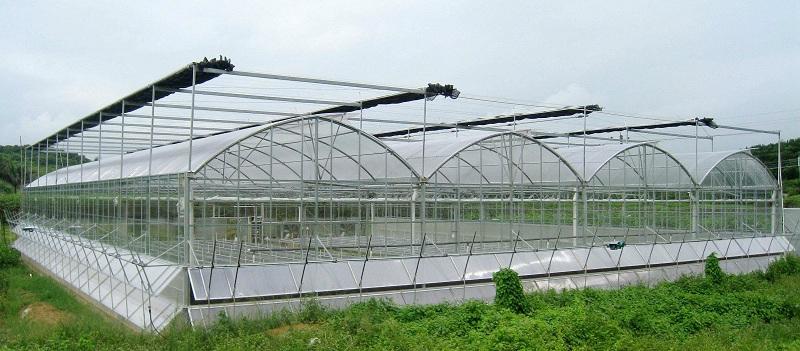 温室大棚设计-广州市煌城温室工程有限公司